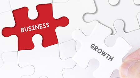 business growth puzzle