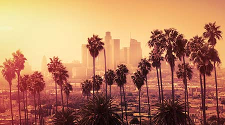 Beautiful sunset of Los Angeles downtown skyline and palm trees in foreground. Smog. Fog.