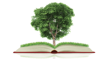 tree with green leaves grows out of a textbook illustrating healthy and green schools