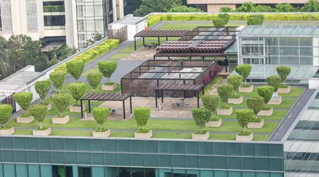 Nice symmetrical garden located on the green roof of office building