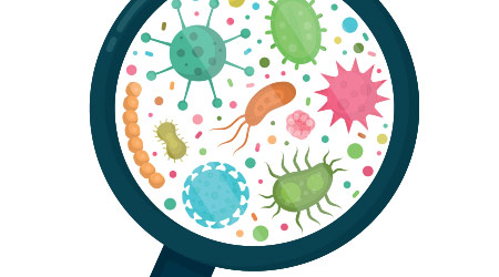 Bacterial microorganism under a magnifying glass