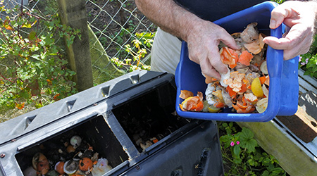 Mature man hands emptying a container full of domestic food waste, ready to be composted in the home garden. Food recycling and environment concept