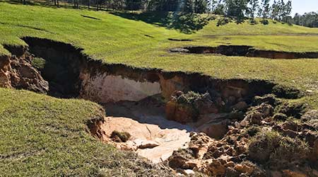 Sinkhole Spotted On University Campus In Florida