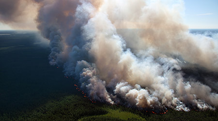 Camp Fire Smoke Closing, Restricting Schools And Businesses In California