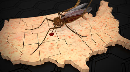 mosquito on a US map with skin rash texture