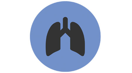 lungs signifying breathing air