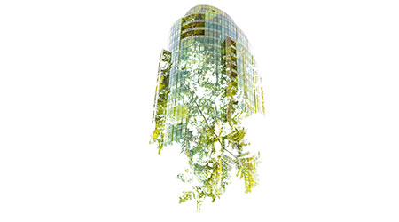 In-camera double exposure of a new high-rise growing from a green tree