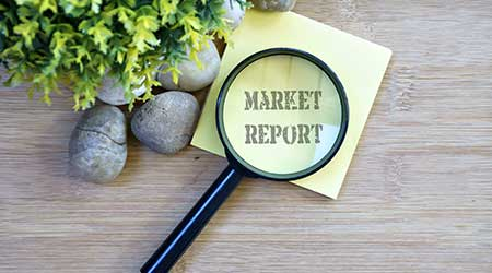 "Ornamental trees, stones, small magnifying glass, sticky note with text ""market report"""