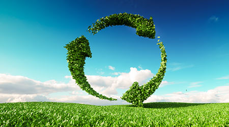 Sustainable development, eco friendly lifestyle concep