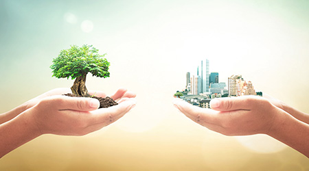 Two human hands holding big tree and the city over blurred nature background