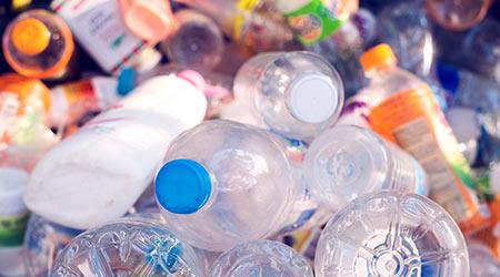 Plastic bottles in a recycling bin.