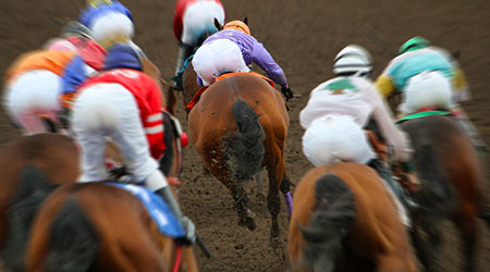 Horse Racing Action Shot From Behind