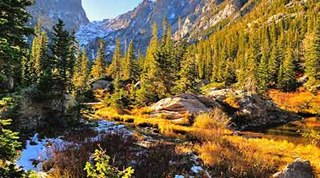 Colorful forest in Rocky Mountain National Park during the fall