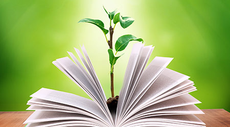 open book on table with plant growing out of it and green background