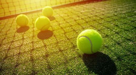 soft focus of tennis ball on tennis grass court with sunlight
