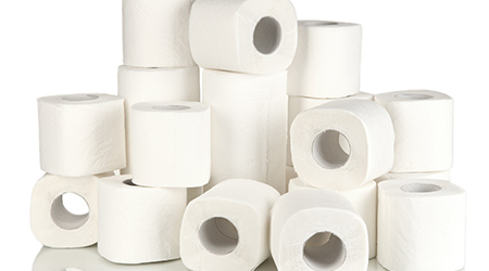 Rolls of toilet paper against white background