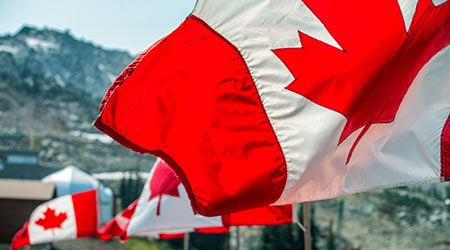 Canadian flags waving in the wind