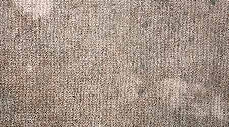Dirty brown carpet with mold