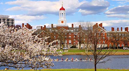Harvard during the spring