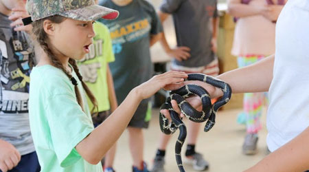 A young girl in a camo hat looks on in amazement as she pets a snake