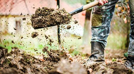 Worker digs soil with shovel in colorfull garden, workers loosen black dirt at farm, agriculture concept autumn detail. Man boot or shoe on spade prepare for digging.