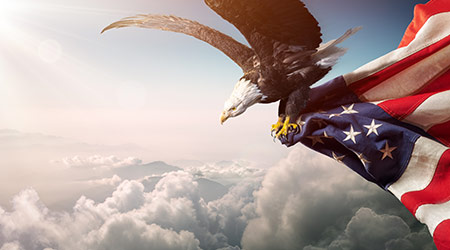 Eagle With American Flag Flies In Freedom