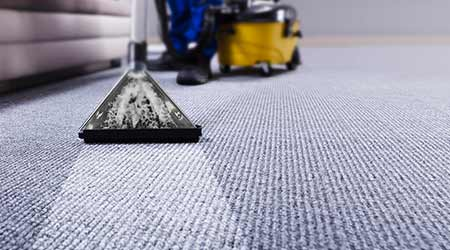 janitor performing professional carpet cleaning service