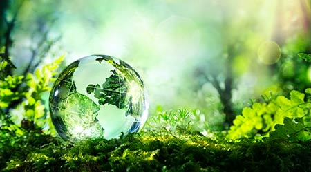 crystal globe resting on moss in a forest - environment concept