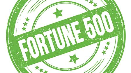 FORTUNE 500 text on green round grungy texture stamp.