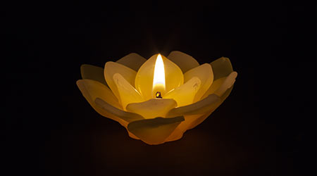 Candle wax on the lotus.