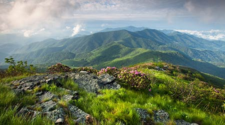Majestic Blue Ridge Mountain Landscape on the Grassy Ridge spur trail off the Appalachian Trail along the state borders of Western North Carolina and Eastern Tennessee