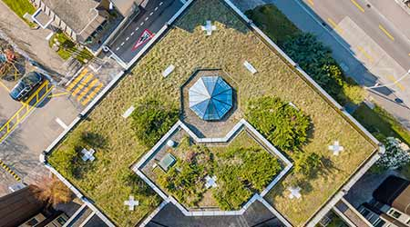 aerial view of a green rooftop. rooftop garden.