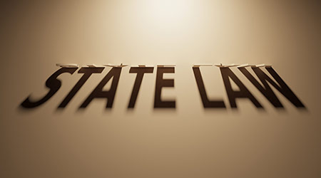 A 3D Rendering of the Shadow of an upside down text that reads State Law.