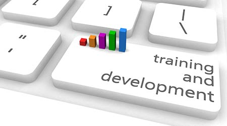 Training And Development or Upgrading as Concept
