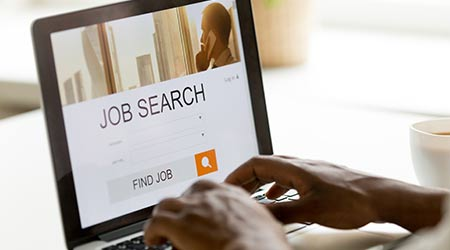 a person conducting a job search online
