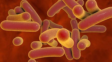 Cleaning Results In Decline Of C.diff Infections