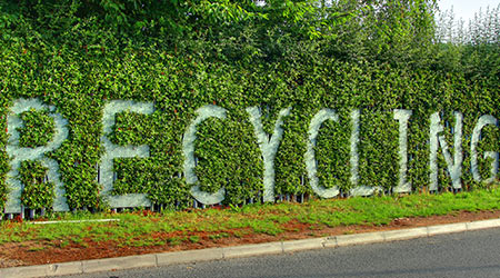 The word Recycling spelled out on wall in foiliage