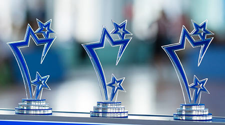 Network Services Company Honors Distributor Performance