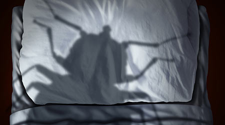 Bed bug fear or bedbug worry concept as a cast shadow of a a parasitic insect pest resting on a pillow and sheets