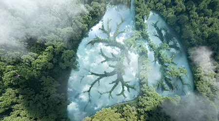 Green lungs of planet Earth. 3d rendering of a clean lake in a shape of lungs in the middle of virgin forest. Concept of nature and rainforest protection, nature breathing and natural co2 reduction.  P